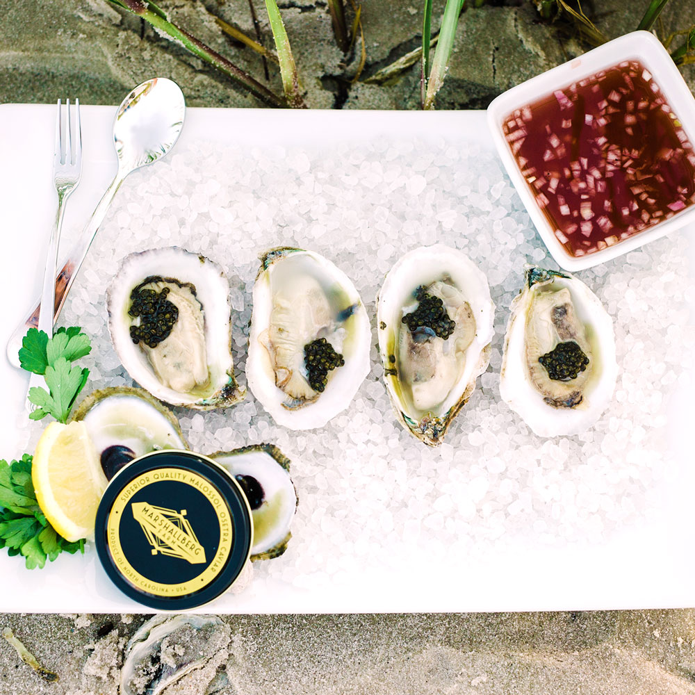 Order oysters